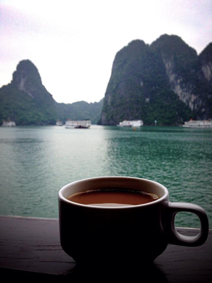 tè aforismi