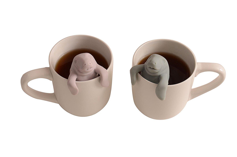 infusori-tè